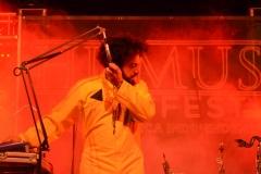Humus Music Fest2